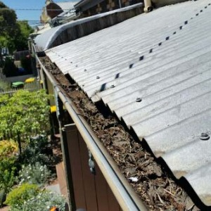 Gutter Clean Brunswick - Before (image)