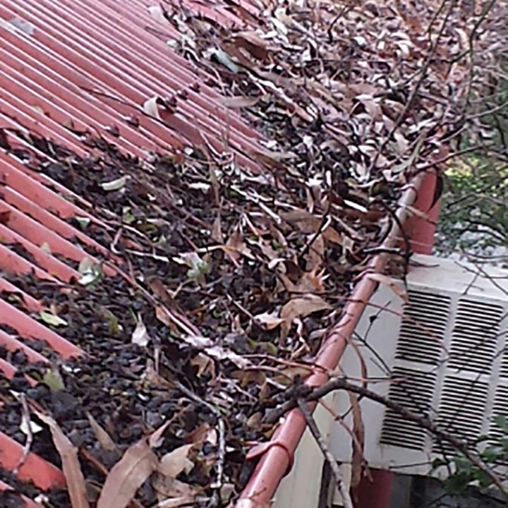 Gutter Clean Needed - Yallambie (image)