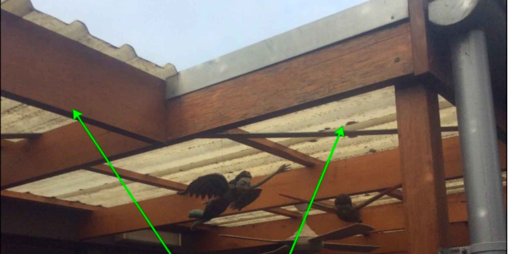 Pergola Roof Replacement - before (image)